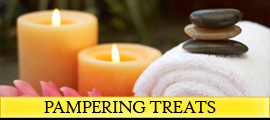 Seal Vip Pampering Treats